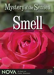 Mystery of the Senses: Smell