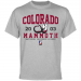 Colorado Mammoth Established T-Shirt - Ash