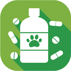 dog medications