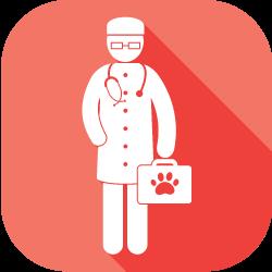 animal hospital near…