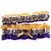 East Carolina Pirates Keepsake Garter Set