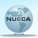 Nucca Adjustment